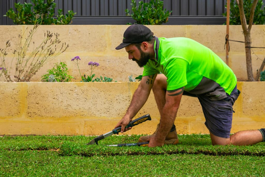 Landscaper cutting and laying turf